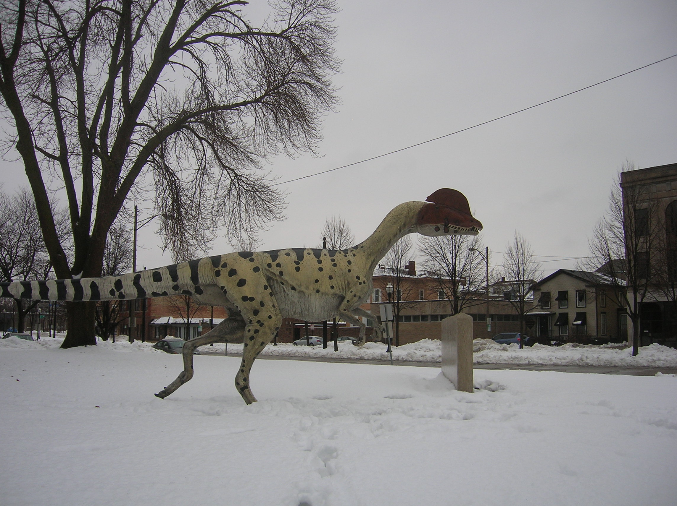 A dinosaur dashes to its car after participating in the Dinosaur Discovery Museum's Darwin Day festivities. Since it turns out that dinosaurs are warm-blooded, the snow was not actually a major problem for the dinosaurs.