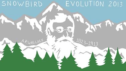 The Evolution 2013 Logo.