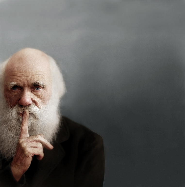 Darwin_color (2)