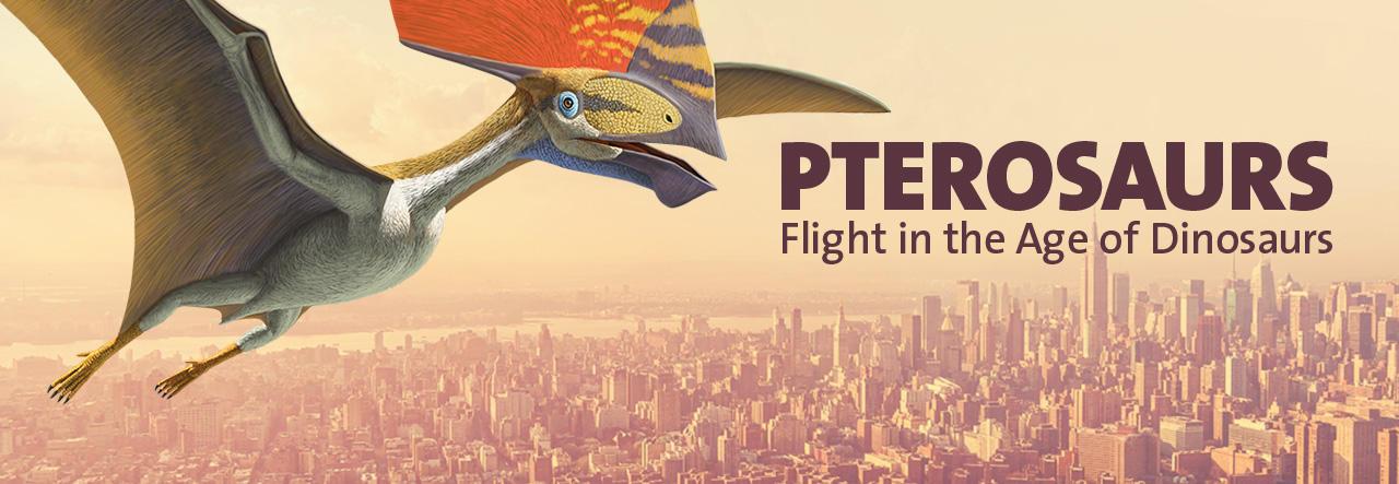 pterosaurs-lead_homepage_slide