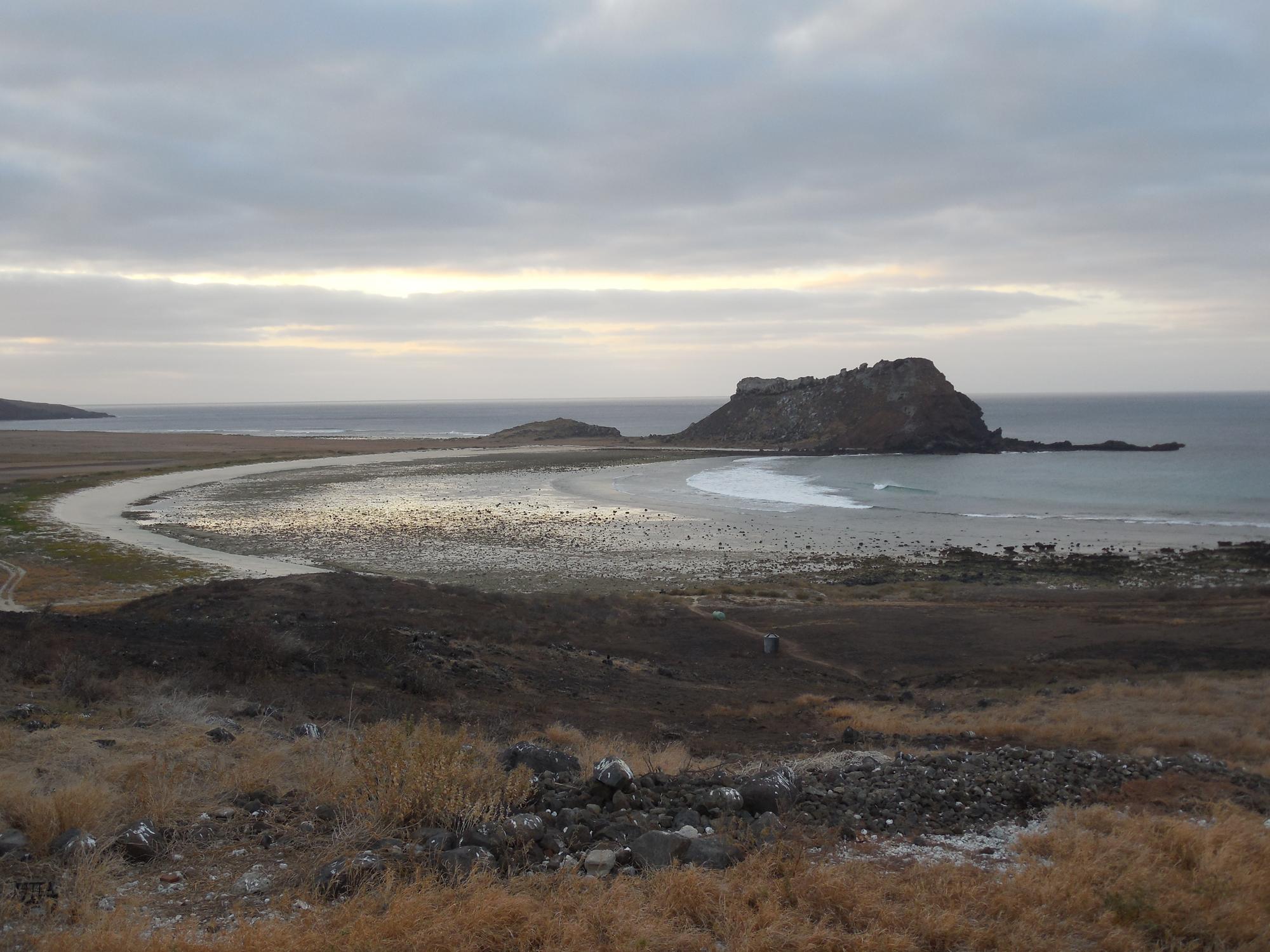 Clarion Island, by Daniel Mulcahy.
