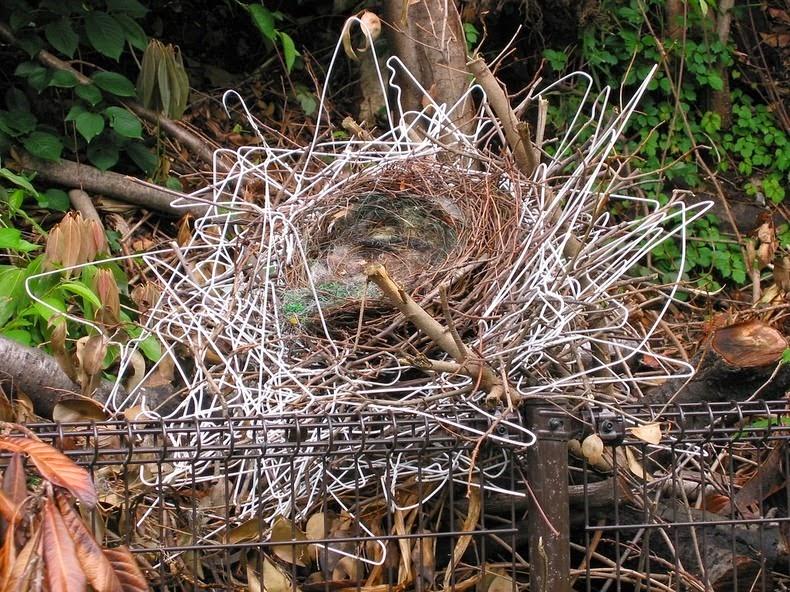 crow-nest-hanger-1[2]