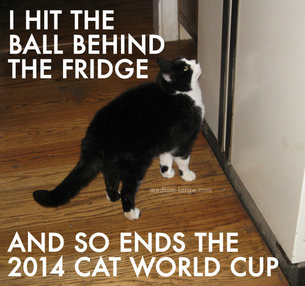 cat-world-cup-2