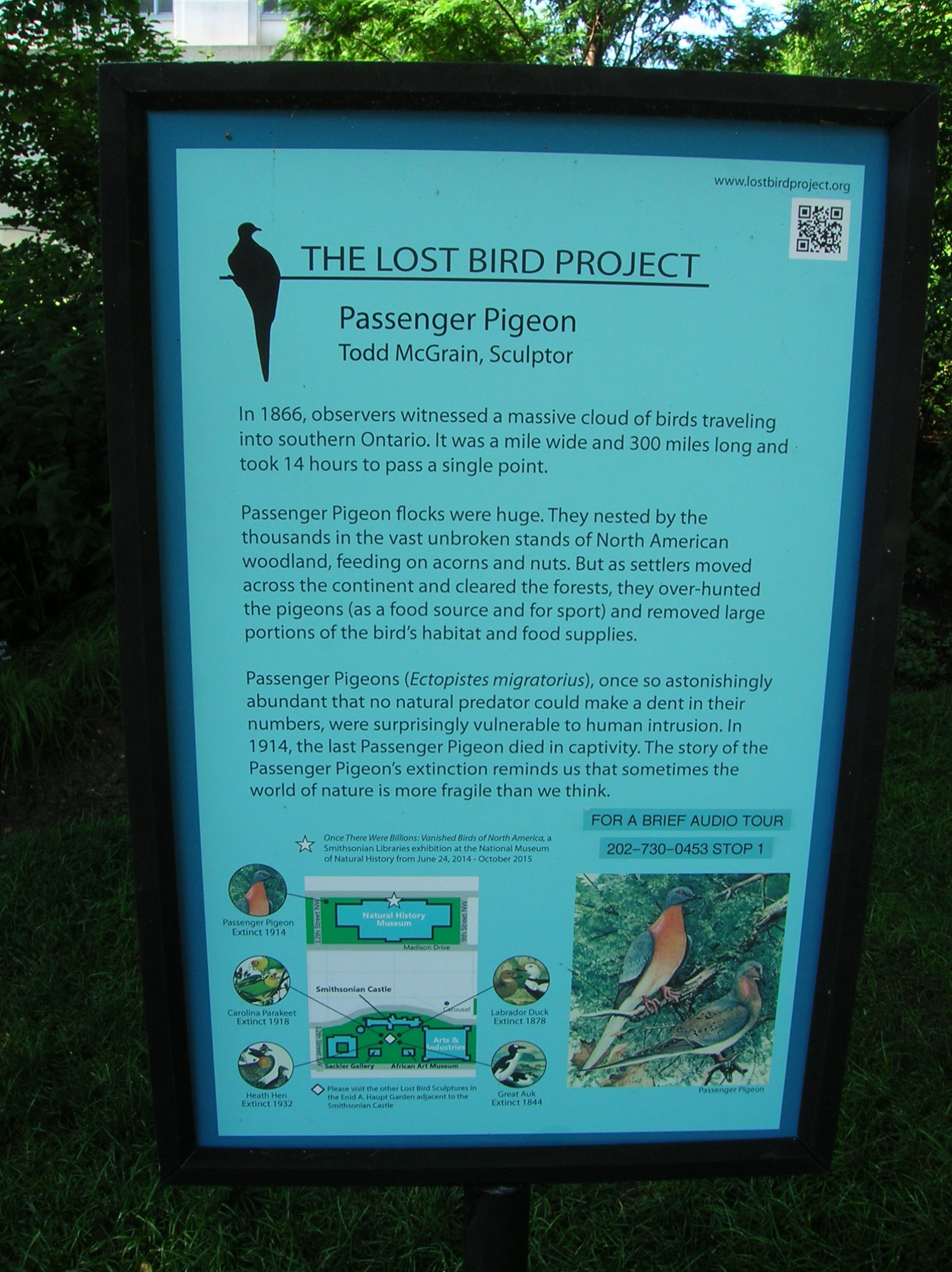 The Lost Bird Project sign at USNM.