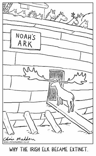 irish-elk