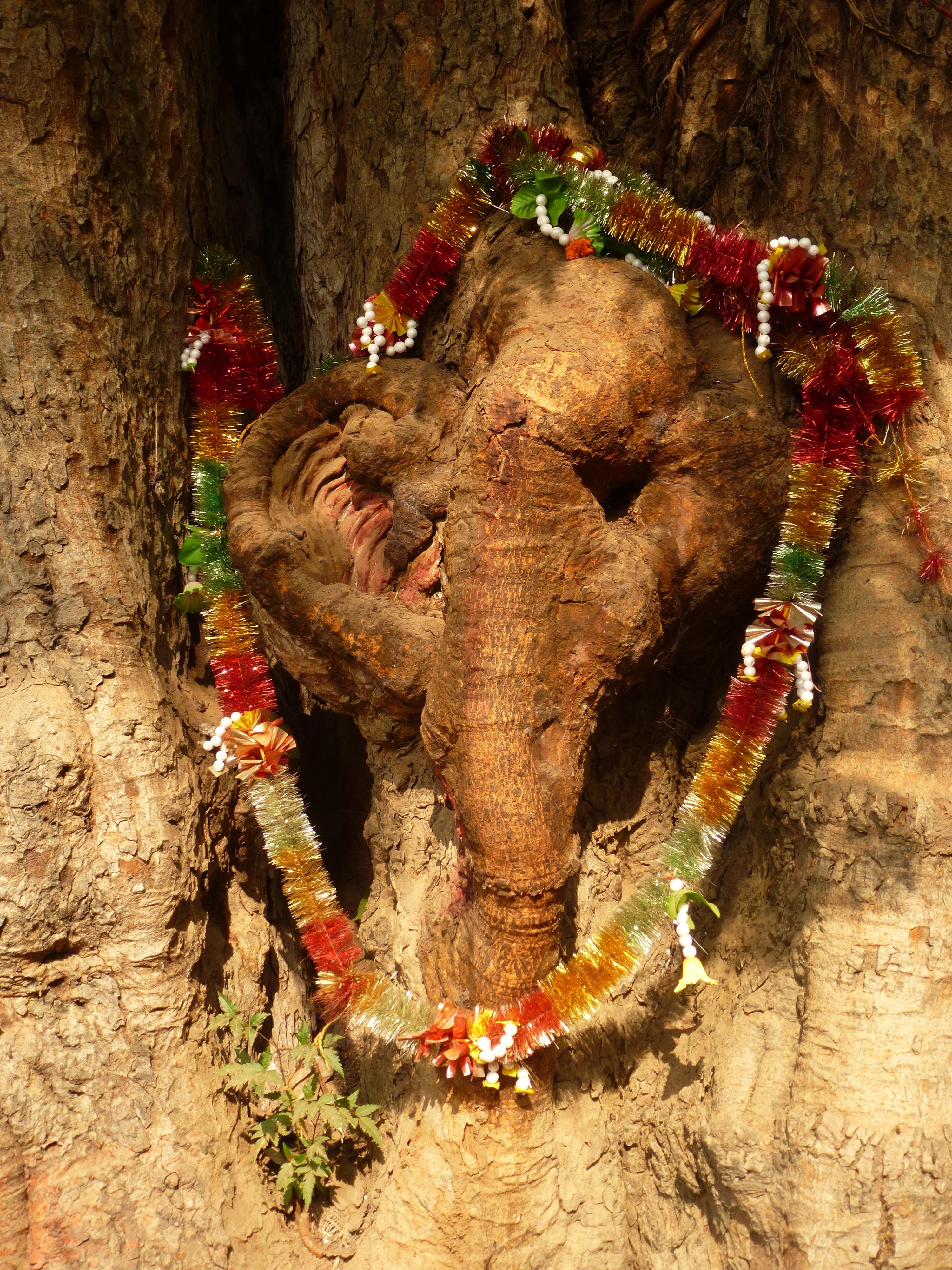 Ganesha tree
