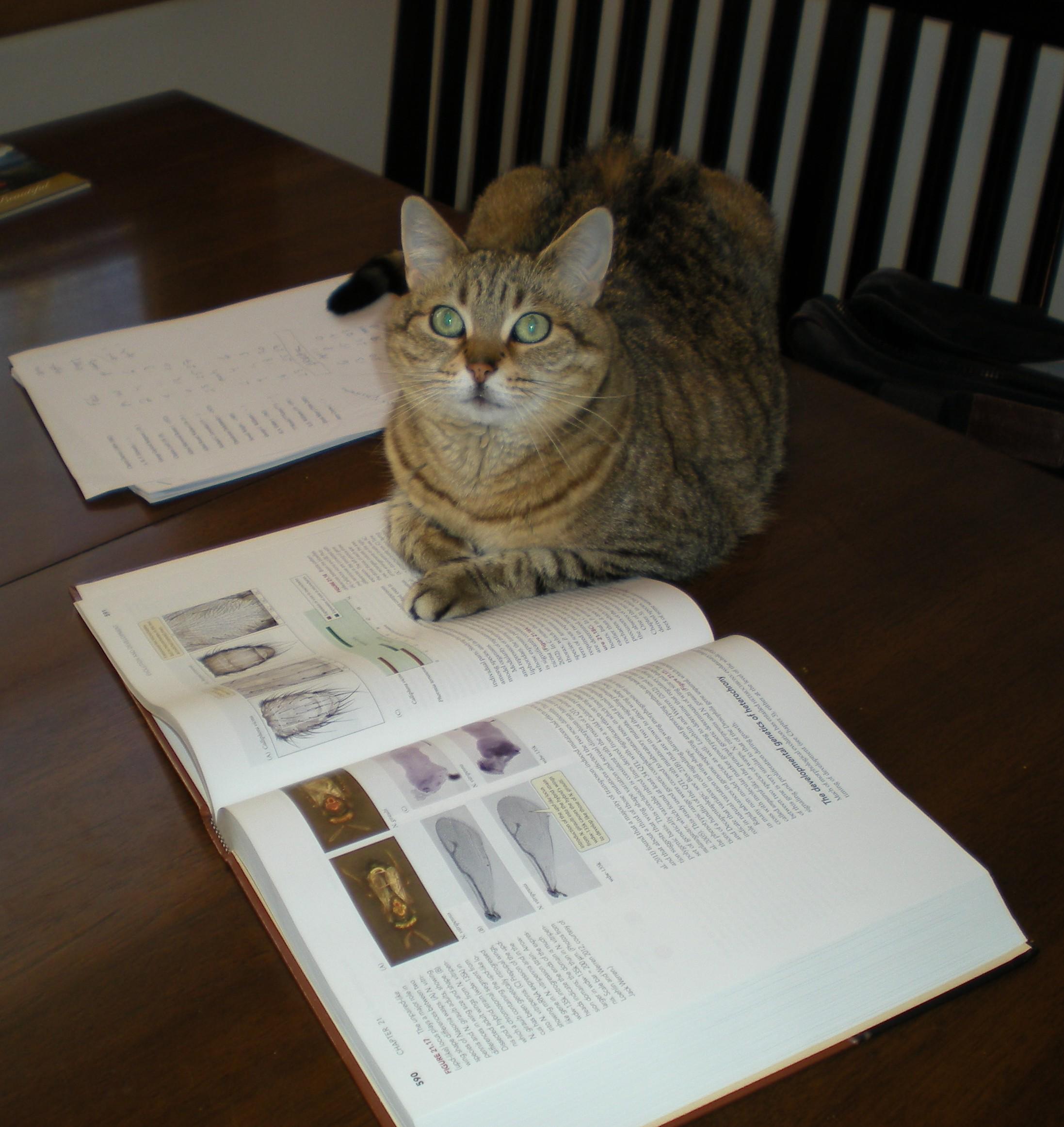 Peyton reading Futuyma